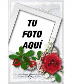 Postal con forma de polaroid y una rosa para felicitar San Valentín
