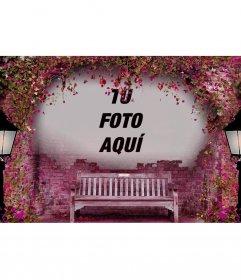 Fotomontaje de color rosa para poner tu foto encima de un banco