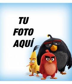 Los personajes de Angry Birds acompañándote en tus fotos con este montaje
