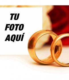 Romántico efecto de compromiso con dos anillos de oro para añadir una foto