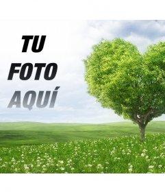 Fotomontaje para poner tu imagen junto a un árbol en forma de corazón
