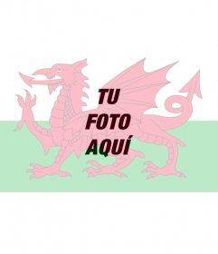 Pon como un filtro la bandera de Gales en tus fotos