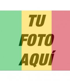 Bandera de Mali para poner en tus fotos de perfil online