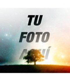 Collage de un cielo estrellado para tu foto