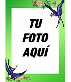 Marco para fotos pájaros y borde verde para hacer con tus imágenes