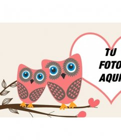 Foto de portada de Facebook de amor para personalizar con dos búhos