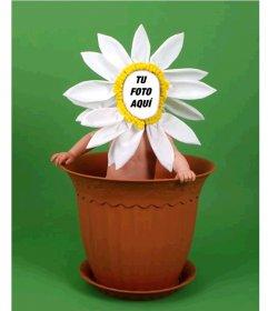 Fotomontaje para niños para disfrazarlos de una flor en una maceta