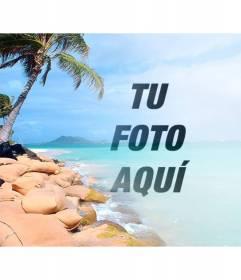 Collage con una playa paradisíaca con agua azul y palmeras para poner tu foto y personalizar con un texto