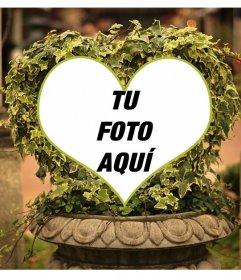Collage online con árbol de hiedra en forma de corazón, en una fuente de piedra