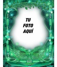 Marco para fotos color esmeralda con mariposas y fondo verde