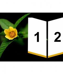 Marco junto a una flor amarilla para dos fotos en forma de insignia