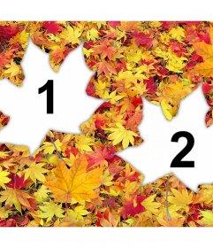 Escóndete bajo las hojas caídas con este efecto para dos fotos