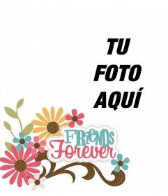 Marco online para una foto y decorarla con la frase FRIENDS FOREVER