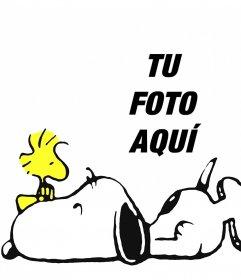 Efecto para editar con tu foto y estar con Snoopy y Woodstock