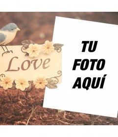 Hermoso marco decorativo con un pajarito y la palabra LOVE para editar