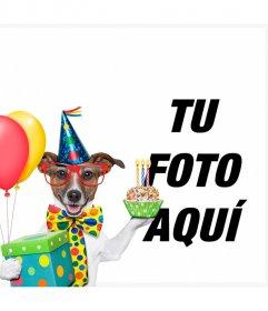Fotomontaje y marcos de cumpleaños para perros