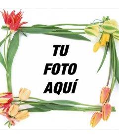 Marco con flores de primavera para tus fotos