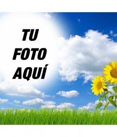 Montaje online para editar y añadir tu foto en un paisaje con margaritas
