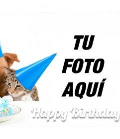 Tierna felicitación de cumpleaños con un perro y un gato