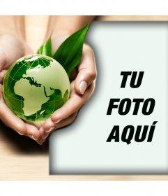 Promueve el cuidado a la Naturaleza con este foto montaje