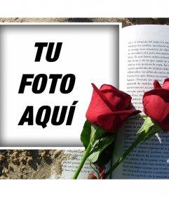 Fotomontajes para sant Jordi, día de la rosa y el libro