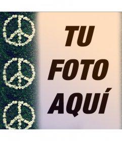 Fotomontaje con el símbolo de la Paz  con flores para tu foto