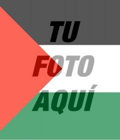 Filtro de la Bandera de Palestina para poner en tu foto