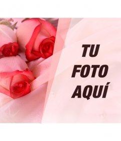 Fotomontaje de amor para poner la foto de tu pareja con unas rosas sobre seda, perlas y destellos de luz