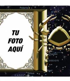 Marco en el que puedes poner tu foto junto al signo del zodiaco Escorpio