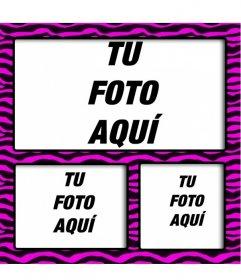 Marco de fotos fucsia con rayas negras tipo cebra para hacer collages con 3 fotos online