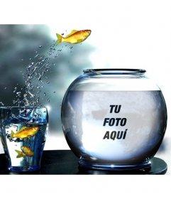 Crea un fotomontaje con una pecera llena de agua con peces amarillos saltando desde un vaso donde pondrás una fotografía