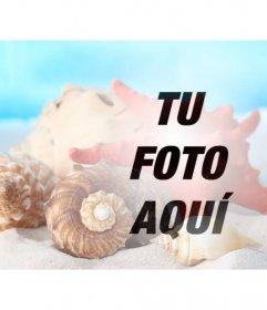 Fotomontaje para crear un collage con cáscaras de mar y caracolas en la arena de la playa sobre a una foto tuya