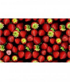 Juego para encontrar tu foto en una imagen llena de fresas