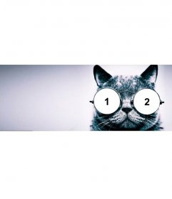 Portada para Facebook personalizable con un gato con gafas