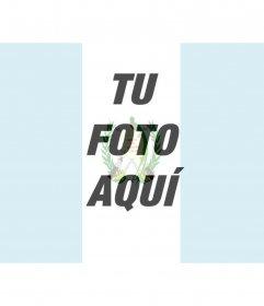 Imágenes de la bandera de Guatemala para poner en tu foto