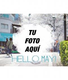 Fondo de pantalla para dar la bienvenida a mayo con tu foto