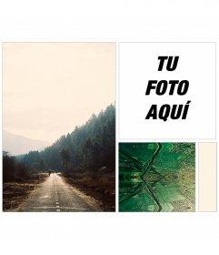Collage para poner tu foto en un fondo indie de bosques y fractales