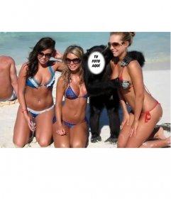 Crea este fotomontaje para ser un mono junto a tres chicas en traje de baño