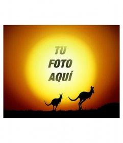 Pon tu foto de fondo del sol en un paisaje con canguros saltando en el atardecer