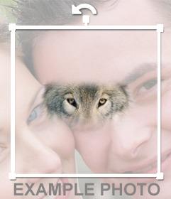 Añade los ojos de lobo en tus fotos con este fotomontaje online