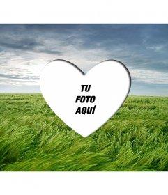 Marco de amor para poner una fotografía romántica con forma de corazón sobre un paisaje con un campo de trigo verde y cielo azul