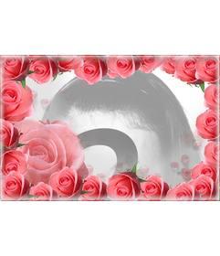 Marco rodeado de rosas de color rosa con tu foto