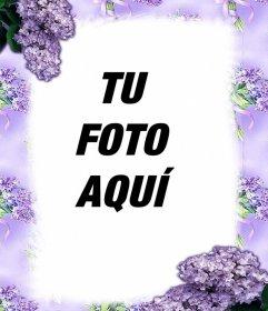 Flores violetas para decorar tus fotos con este efecto online