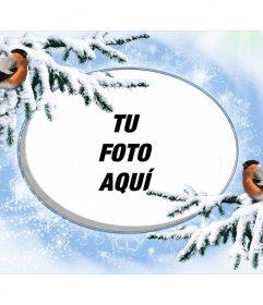 Marco de fotos nevado para personalizar con dos pajaritos