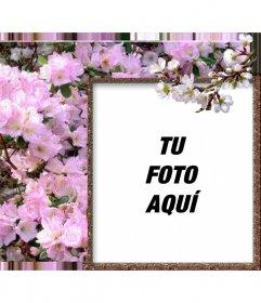 Marco para fotos online de flores blancas y primavera