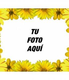 Marco de fotos para personalizar con margaritas amarillas