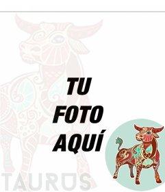 Composición del zodiaco Tauro para tus fotos de perfil