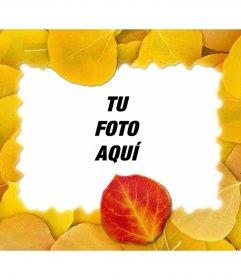 Montaje de un marco de fotos con hojas secas y tu foto