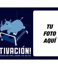 Foto de motivación para Facebook con un rinoceronte