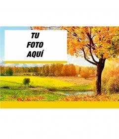 Fondo para fotos con un paisaje de campo de otoño